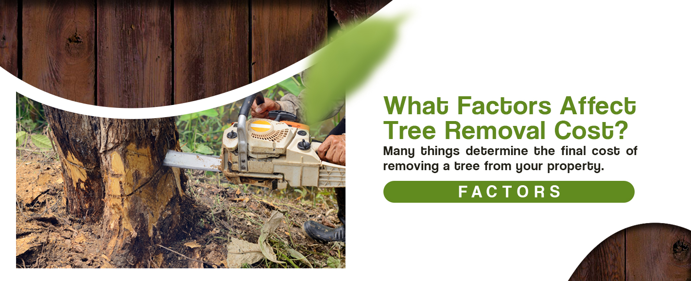 tree removal cost how much to remove a tree removal cost. Black Bedroom Furniture Sets. Home Design Ideas